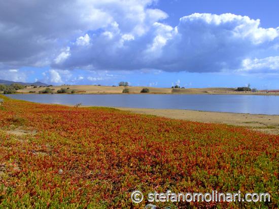 Maspalomas Strand, D�nen - Gran Canaria - Kanaren