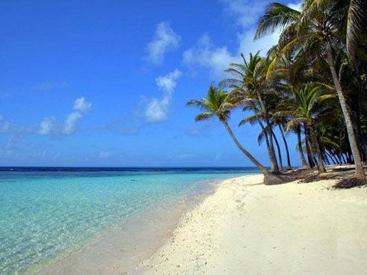 -  - Guadeloupe