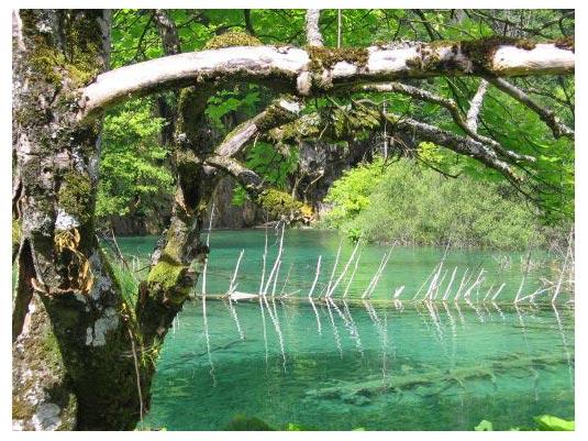 Top Plitvice Pictures - Plitvice Lakes N. Park - Kroatien
