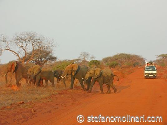Сафари Национальный парк Тсаво - Тсаво Запад национальный парк - Кения